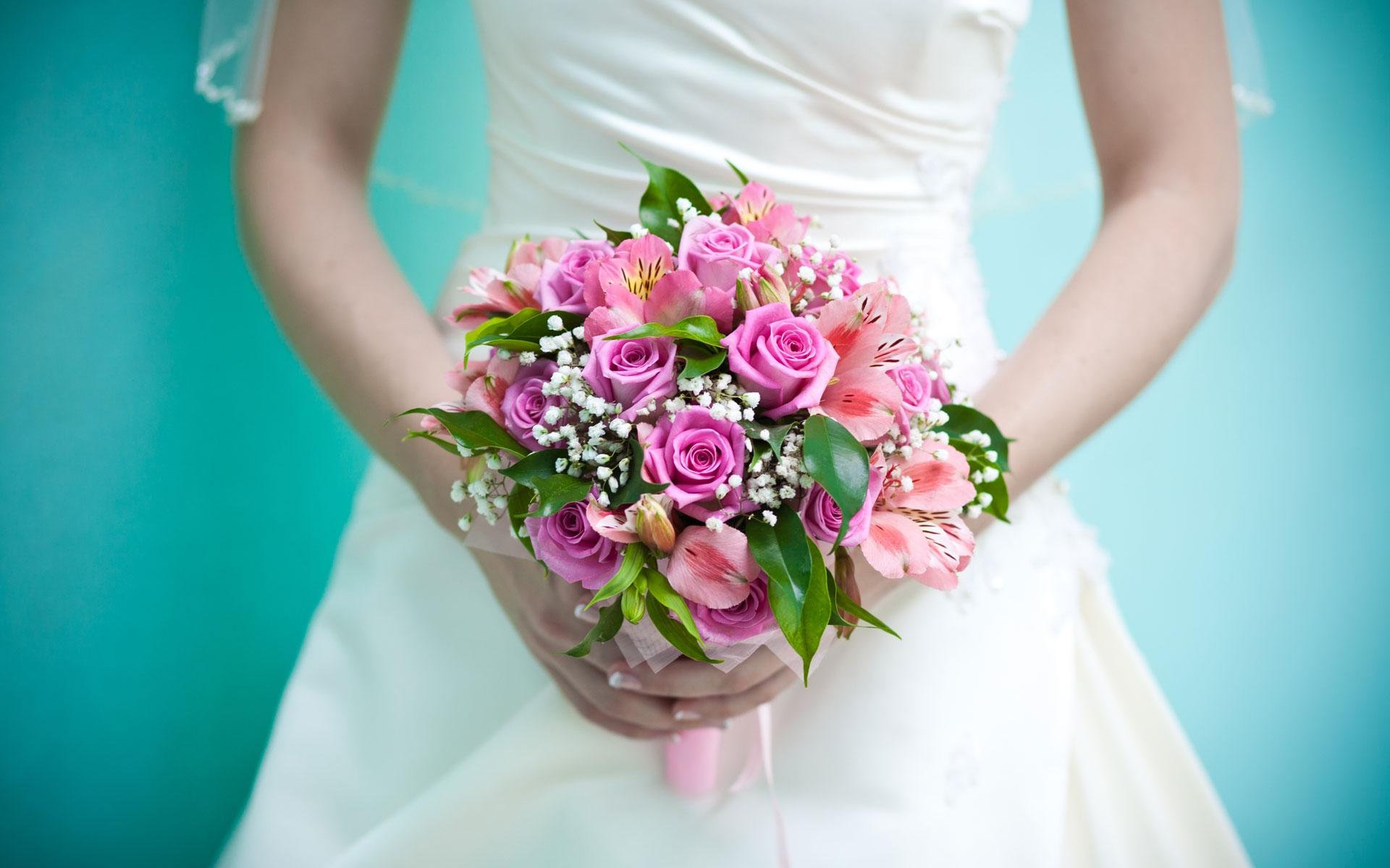 Цветок с красными и зелеными листьями фото с названиями и описанием